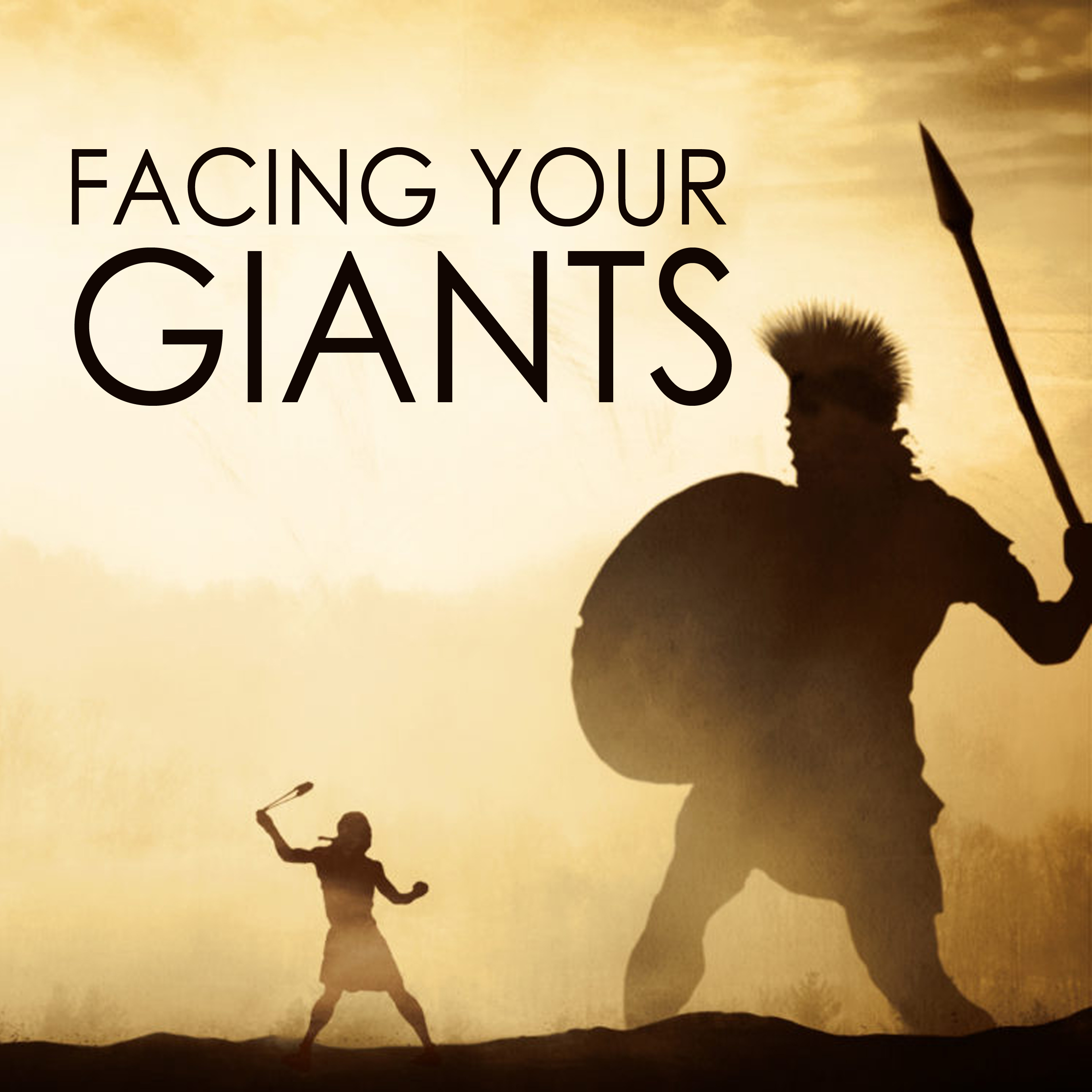 facing giants web